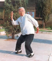 Yang Meijun, 27th lineage holder of Wild Goose Qigong